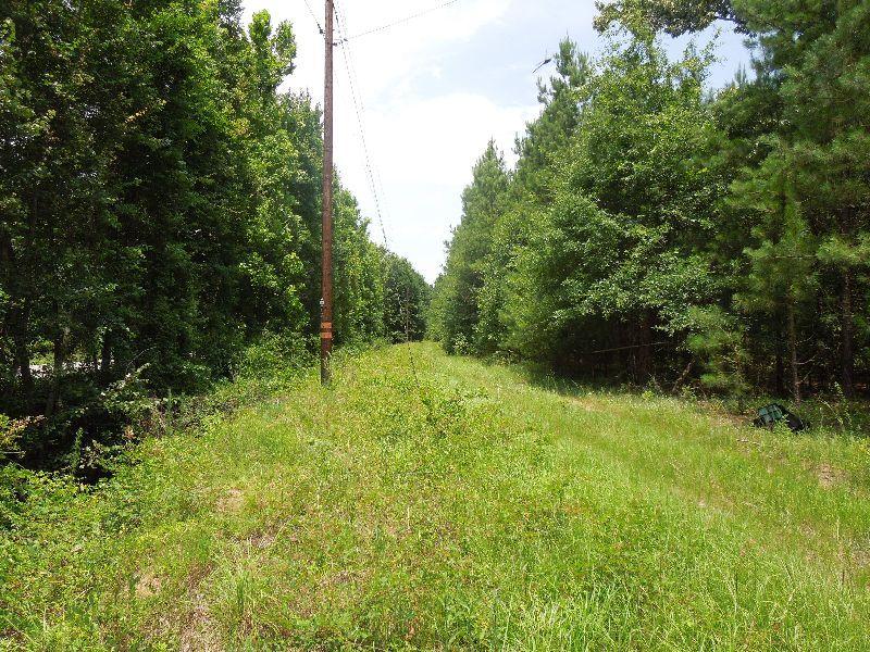 Princess Pond Blocks 1 & 2 : Summerton : Clarendon County : South Carolina