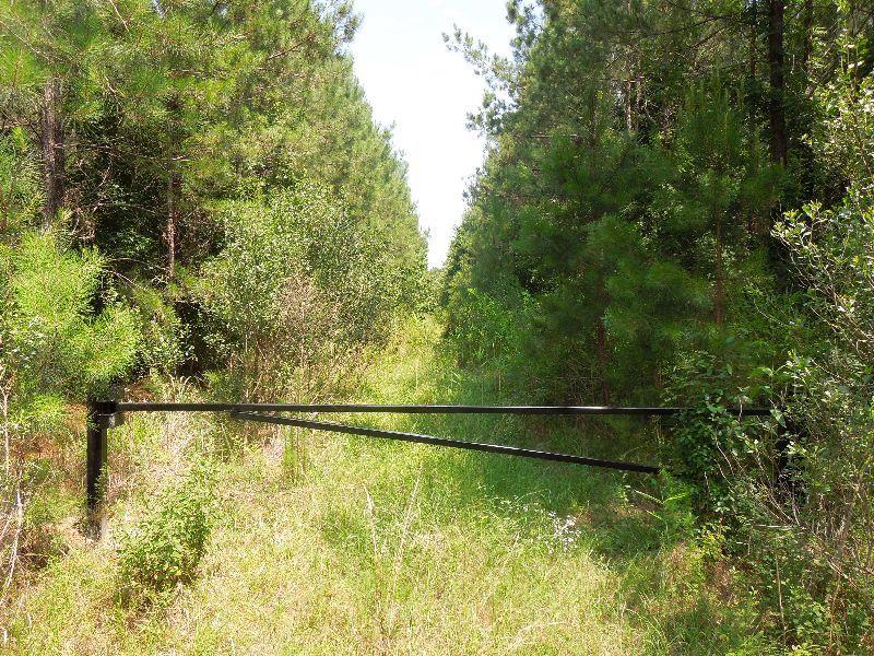 Princess Pond Block 3a/3b Combined : Summerton : Clarendon County : South Carolina