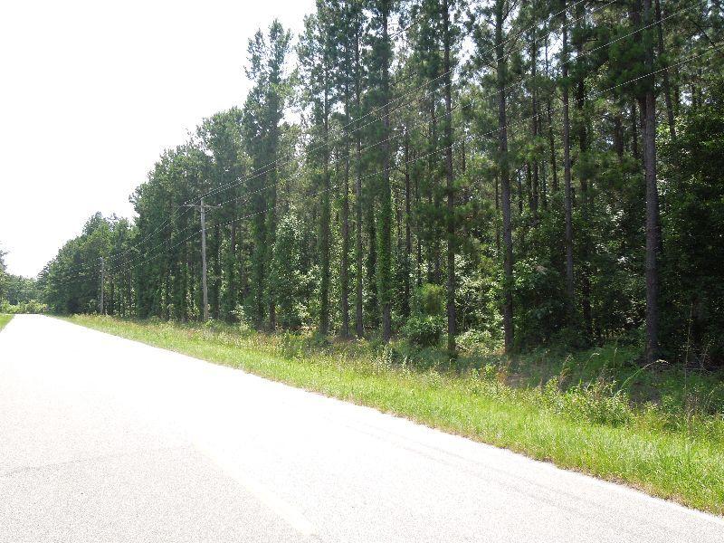 Princess Pond Block 4 : Summerton : Clarendon County : South Carolina