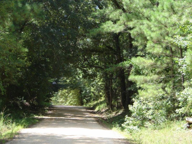 Goat Rock Lake 210 : Phenix City : Lee County : Alabama