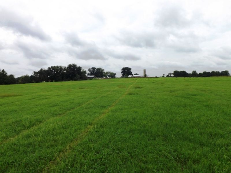 Banks Farm : Statesboro : Bulloch County : Georgia