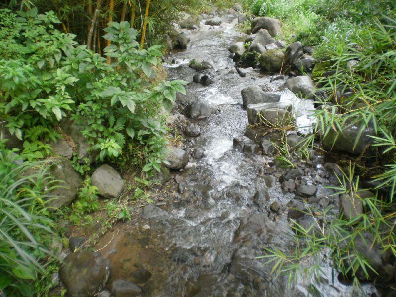 3 Waterfalls On 5 1/2 Jungle Tract- : Cachi Orosi : Costa Rica