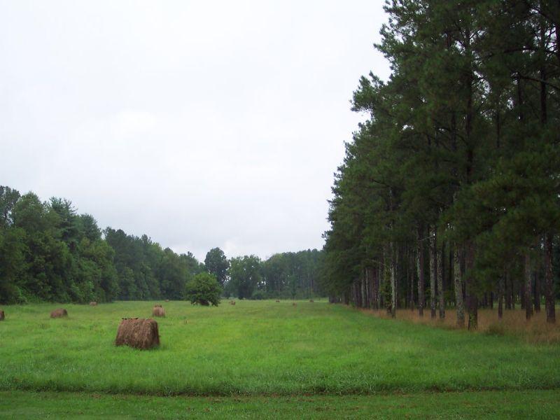 Bank Owned 44 Ac Open, Woods, Creek : Adairsville : Bartow County : Georgia