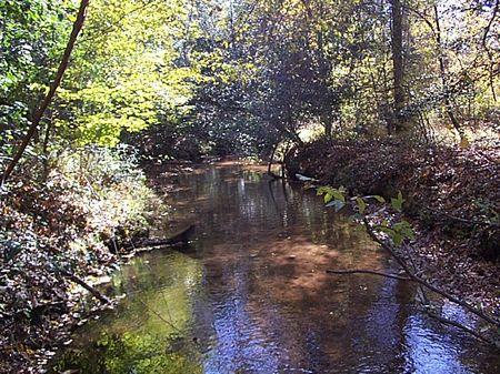 Zebina Plantation : Louisville : Jefferson County : Georgia