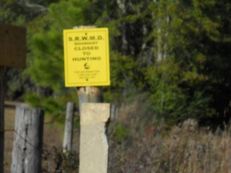 22+/- Ac. Next To State Owned Land : Madison : Madison County : Florida