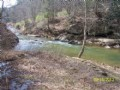 5 Acres On Rushing Mountain Creek