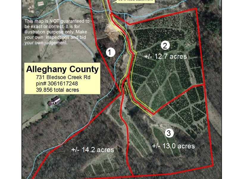 39.856+/- Acres : Sparta : Alleghany County : North Carolina