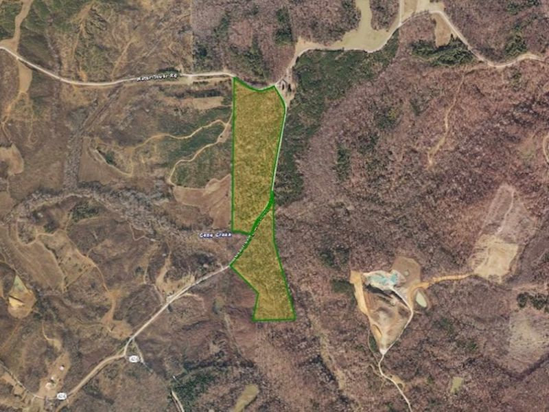 65.5 Acres In Cedar Grove : Cedar Grove : Carroll County : Tennessee