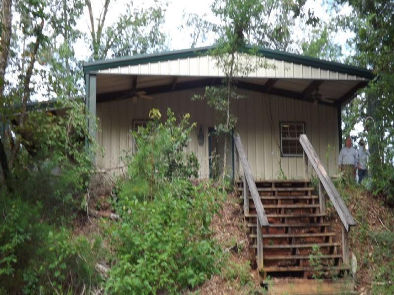Hardwood Forest, Cabin, Creek : Cuthbert : Randolph County : Georgia