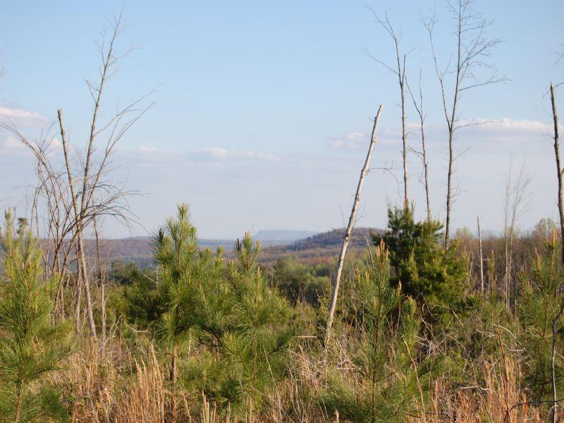 Mini Farm Or Horse Farm : Signal Mountain : Sequatchie County : Tennessee