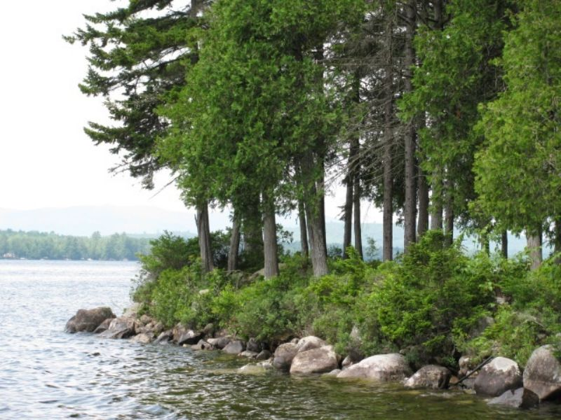 Schoodic Lake Lot & Cabin : Lakeview PLT : Piscataquis County : Maine