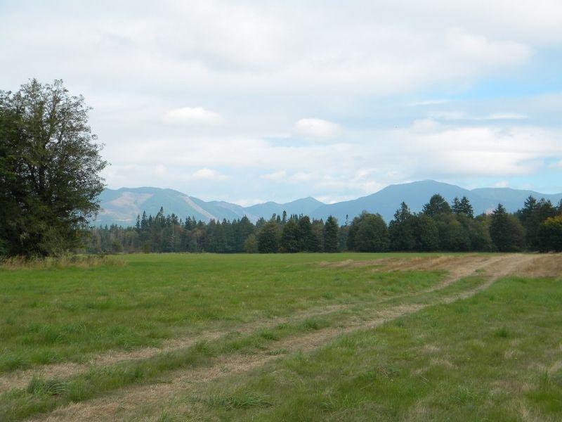 287 Acre Cattle Ranch : Elma : Mason County : Washington