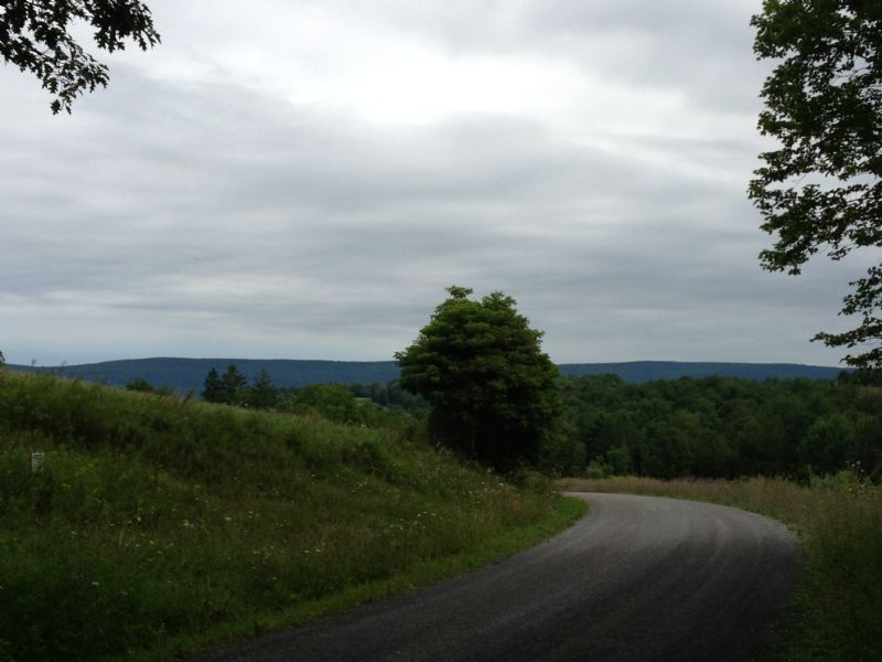 63+/- Acres Land & Oil & Gas Rights : Millville : Columbia County : Pennsylvania