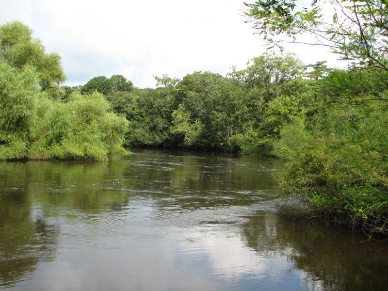 Recreational River Tract : Guyton : Effingham County : Georgia