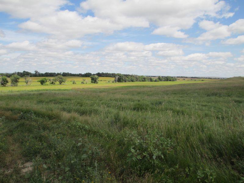 North Dakota Land Investment : Butte : McLean County : North Dakota