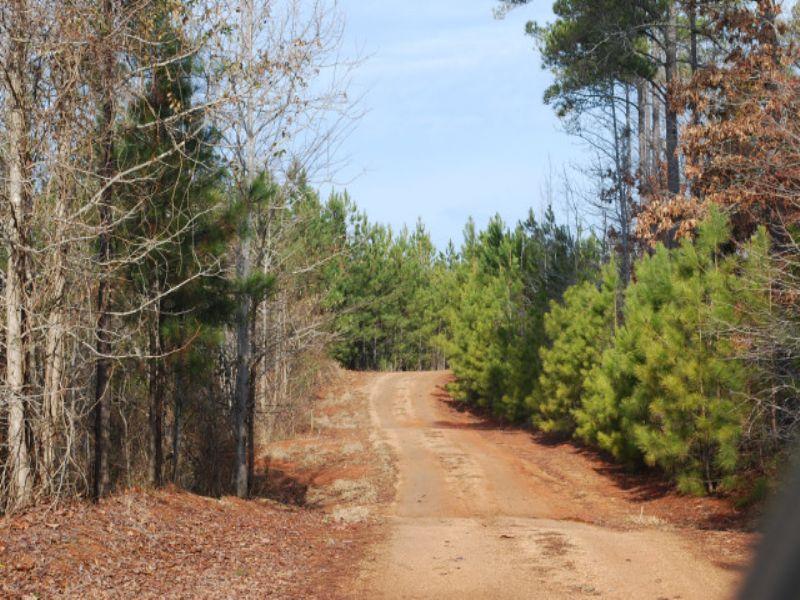 87 Acre Recreational Tract In Union : Carlisle : Union County : South Carolina