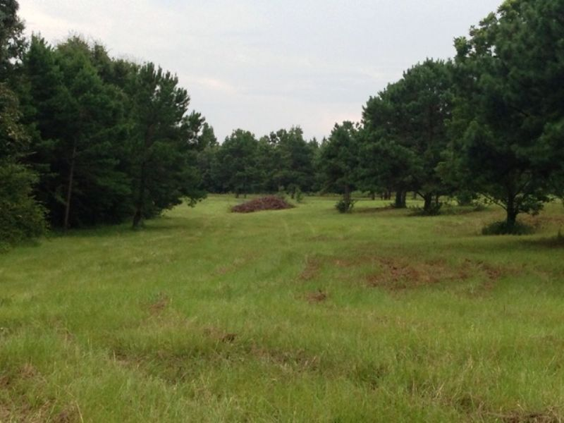 27 +/- Ac In The Josie Community : Banks : Pike County : Alabama