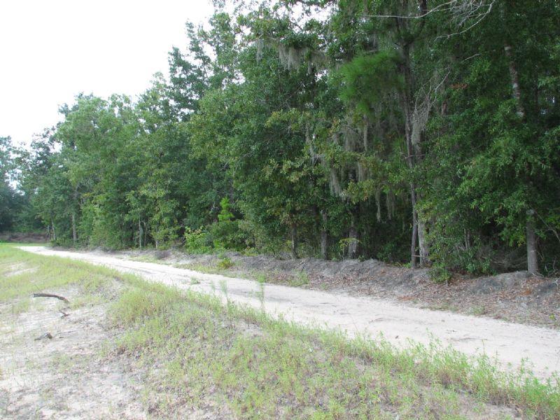 Woods River Tract #3 : Guyton : Effingham County : Georgia
