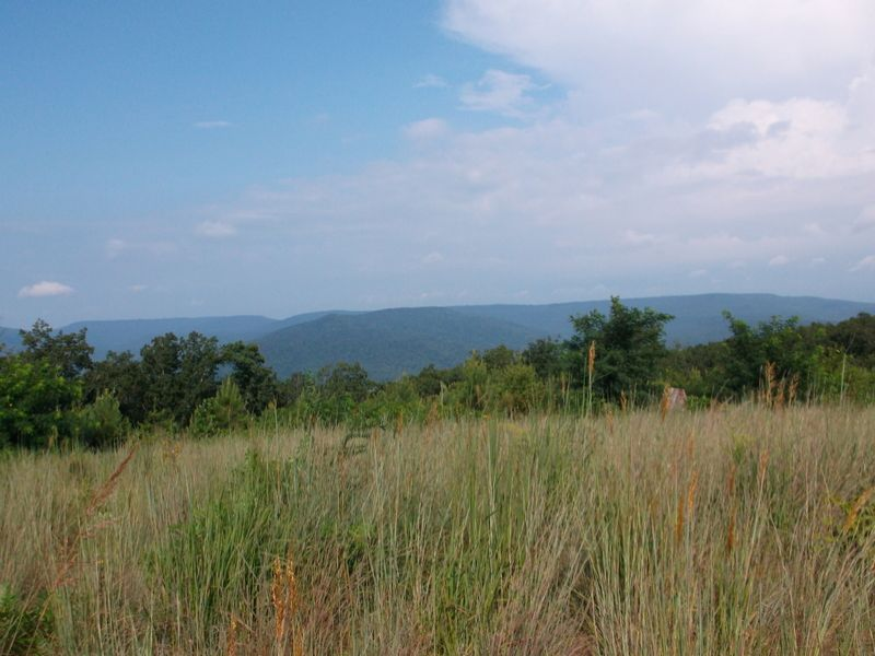 55 Acres On The Cumberland Plateau : Mcminnville : Warren County : Tennessee