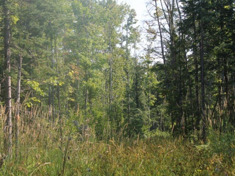 Tbd Yalmer Road  Mls#1075270 : Skandia : Marquette County : Michigan