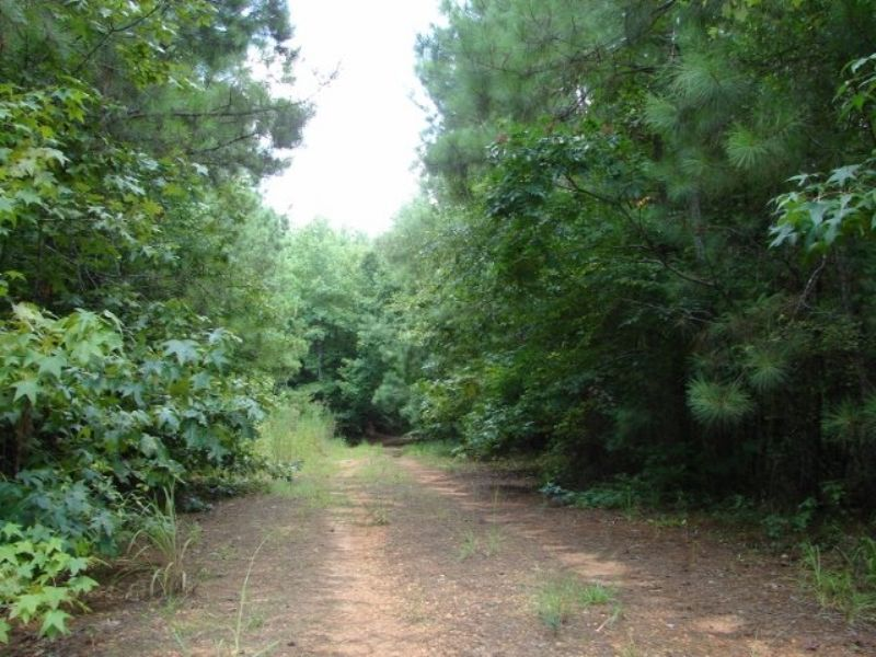 Natchez 20 : Vredenburgh : Monroe County : Alabama