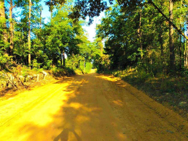 Charlie Williams Tract : Sadis : Burke County : Georgia