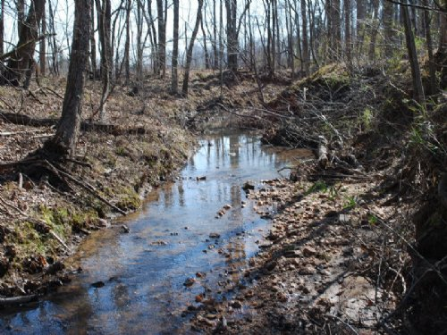 151 Recreational Tract Near The Bro : Carlisle : Union County : South Carolina