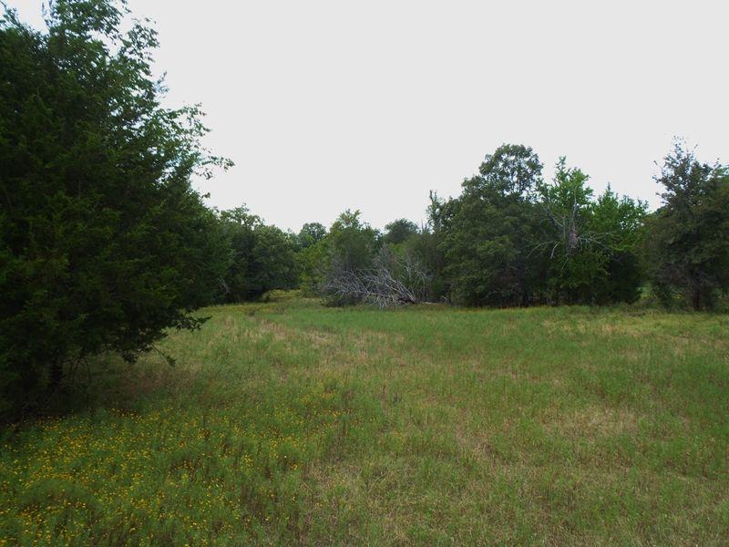 10 Mile Creek 120 : Antlers : Pushmataha County : Oklahoma