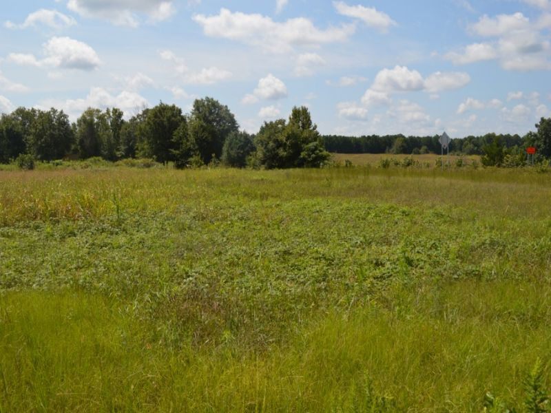 24.79 Acres : Grey Court : Laurens County : South Carolina