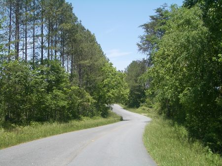 159 Acres Near Adairsville : Adairsville : Bartow County : Georgia