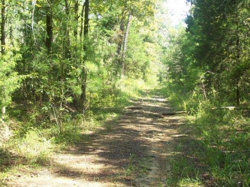 Lake Frontage : Lincolnton : Lincoln County : Georgia