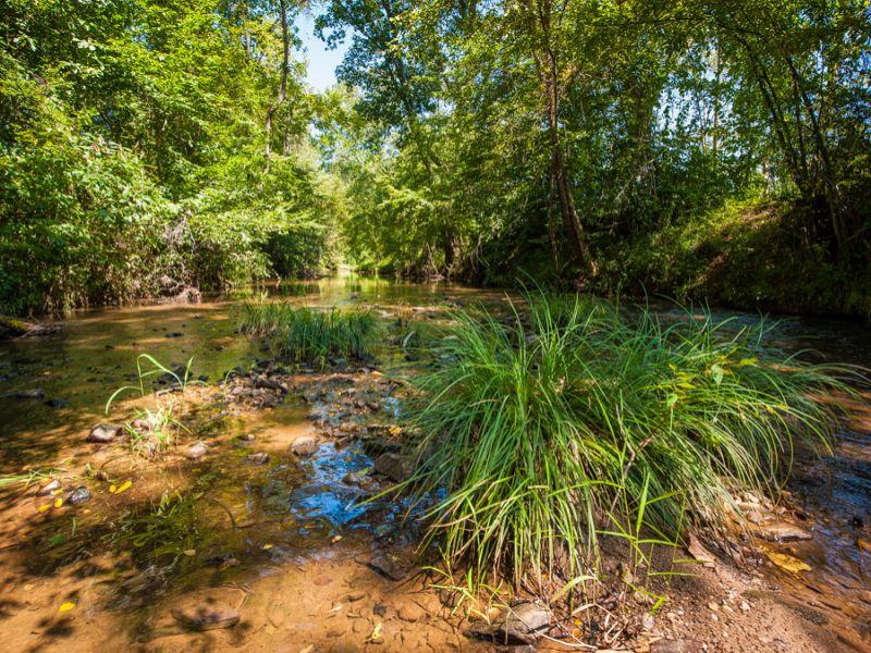 Bell Farm : Madison : Rockingham County : North Carolina