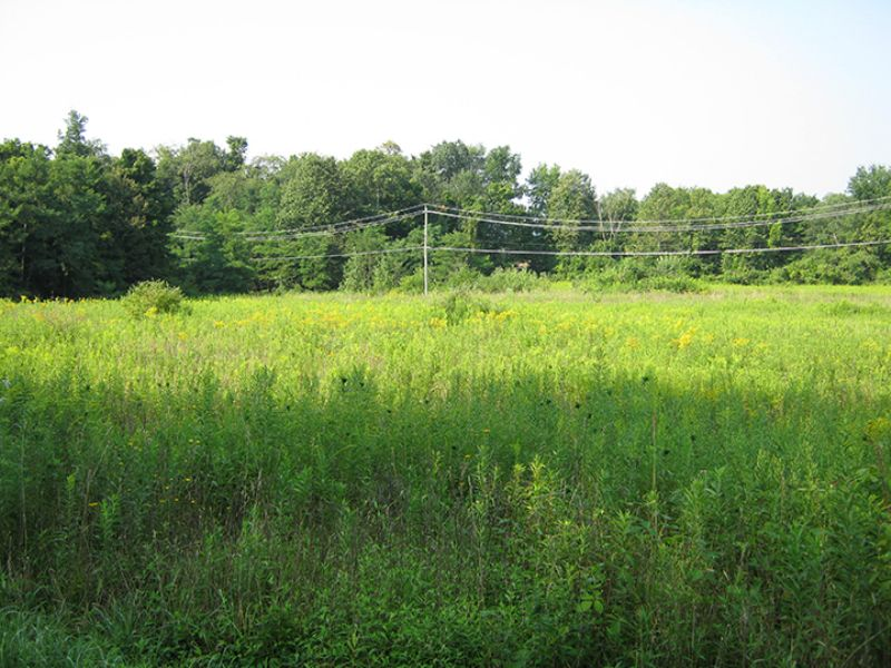 23 Acres Approved Lot Subdivision : Groton : Tompkins County : New York