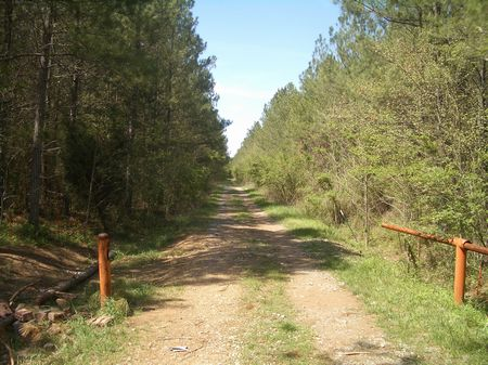 275 Acres Near Adairsville : Adairsville : Bartow County : Georgia