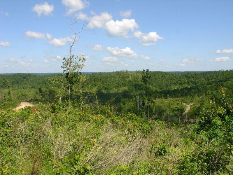 20.9 Acres Antler Ridge. Terms : Belleville : Shannon County : Missouri