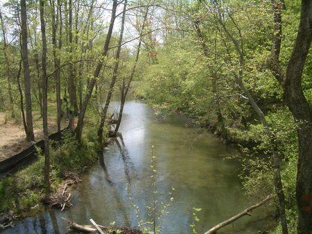 249 Acres Near Adairsville : Rydal : Bartow County : Georgia