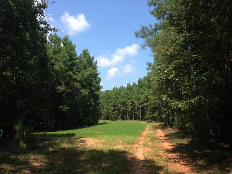 Carlton South : Carlton : Oglethorpe County : Georgia