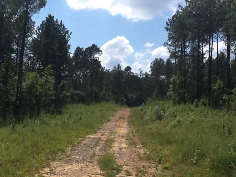 Lake Sinclair Tract : Milledgeville : Baldwin County : Georgia