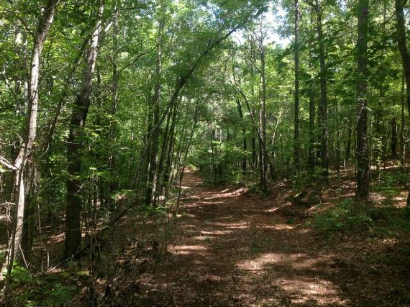 27+/- Acres Homesite : Goodwater : Coosa County : Alabama