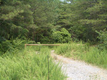 363 Acres On Langford Road : Calhoun : Gordon County : Georgia