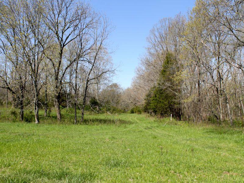Cedar Ridge Ranch Missouri Terms : Beulah : Phelps County : Missouri