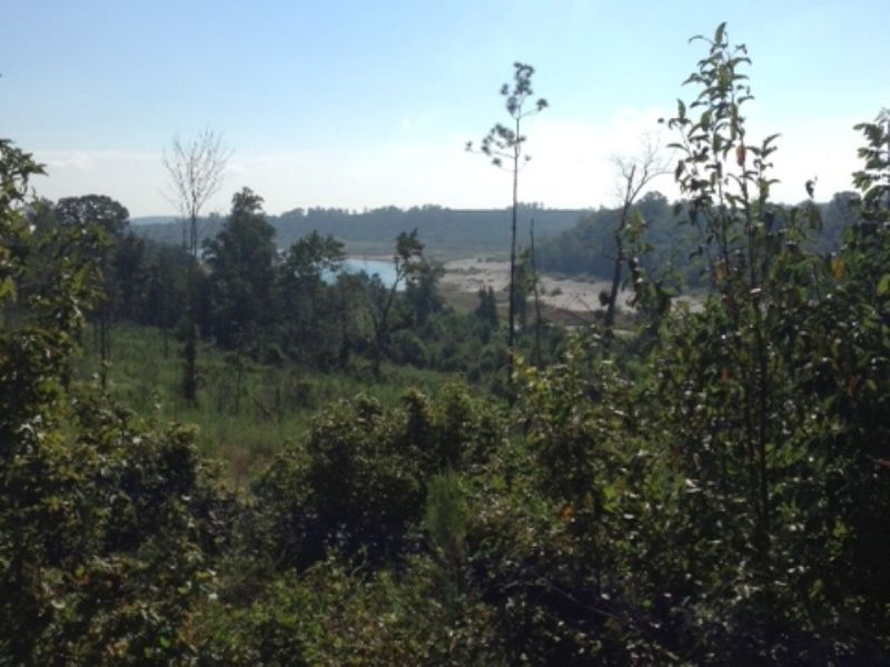 Ripley Tract : Dry Branch : Twiggs County : Georgia