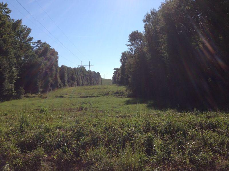 Renfroe 5 : Cusseta : Stewart County : Georgia