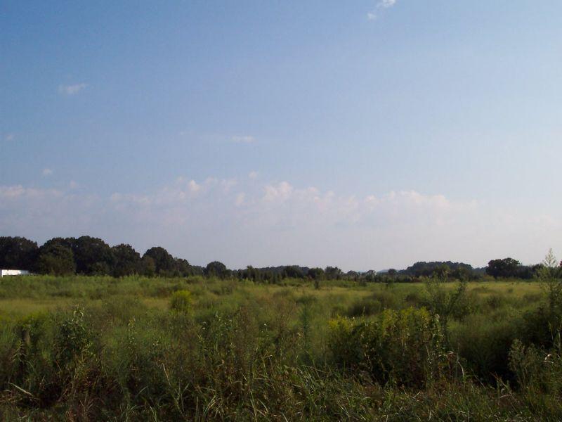18.89 Acres Fenced Pasture Pond : Kingston : Bartow County : Georgia