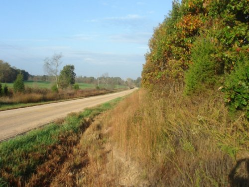 5.01 Acres Valley View Ranch. Terms : Salem : Dent County : Missouri