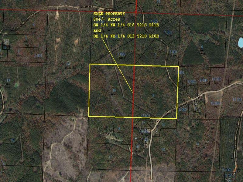 82.76 +/- Acres : Wadley : Randolph County : Alabama