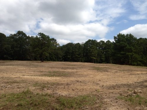 40 +/- Acres With 5 +/- Pond : Troy : Pike County : Alabama