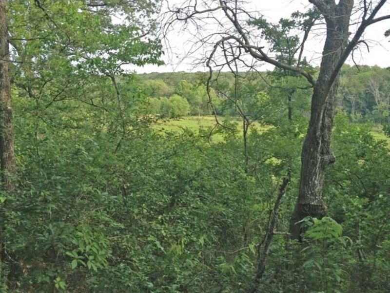 Deep Fork Tr 5 West 40 : Mason : Okfuskee County : Oklahoma
