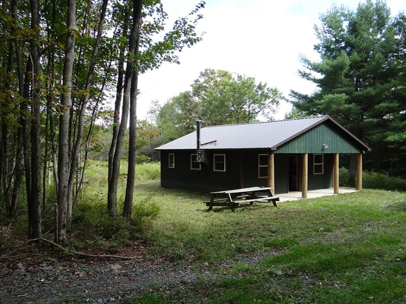 55 Acres Cabin Borders State Land : Mcdonough : Chenango County : New York