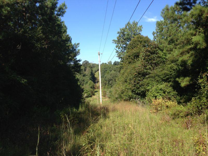 Renfroe 8 Tract : Cusseta : Stewart County : Georgia